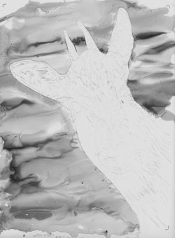 Goral Detail Sketch B & W