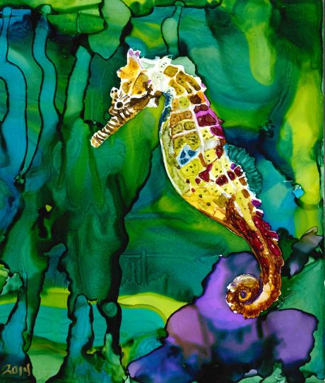 Seahorse ss