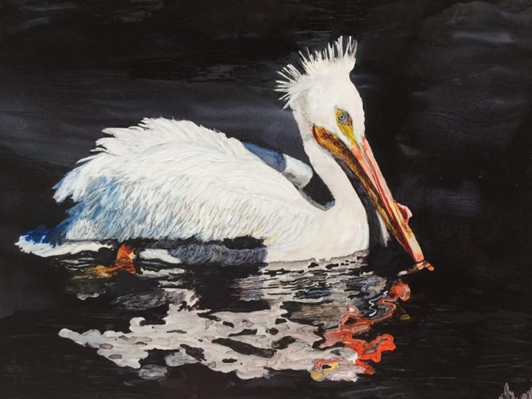 gwen-dexter-swan