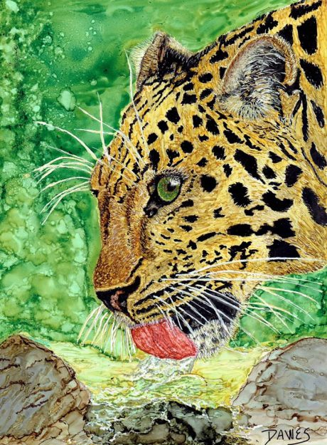 karen-dawes-colley-leopard